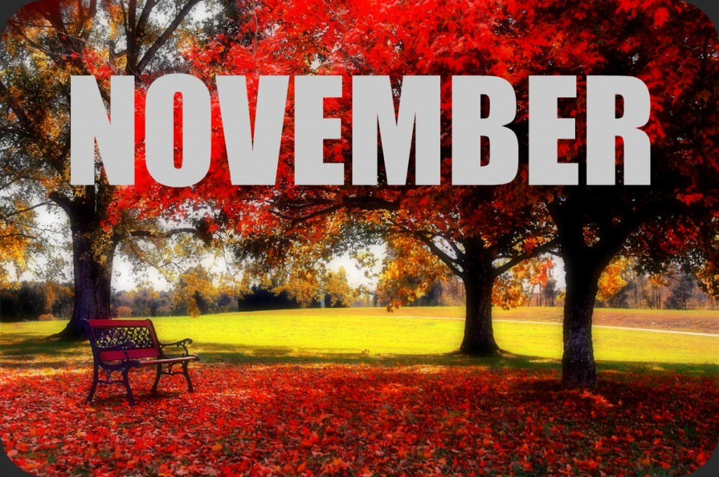 20141020_November_Scholarships