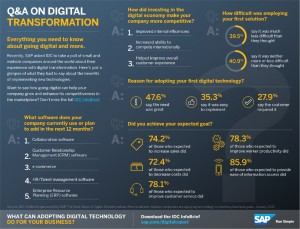 sap-infographic-1