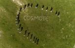"""Εικόνα για το άρθρο """"Στην κορυφή και πάλι οι εναερίτες Cosmote"""""""